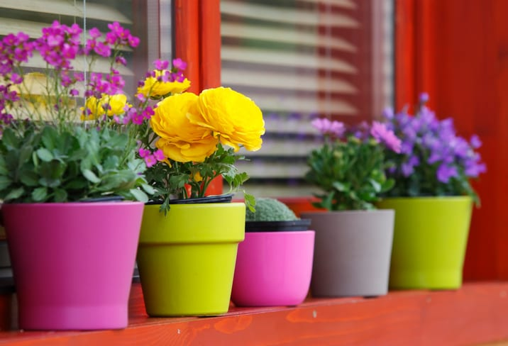 How To Spring Up Your Home
