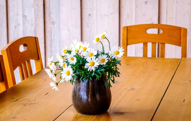 flower at an old table and chair
